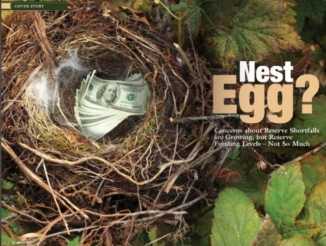 nest egg for reserve funds